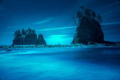 Beach sea stacks with trees Stock Images