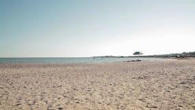 Beach. Sea. Sunset. Nature. Beach, sea calm, sunny weather, sandy shore, sea shells on the sea shore, sea water, tranquil idyllic scene of a golden sunset over stock footage