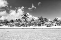Beach at sea water, green palms, umbrellas, Costa Maya, Mexico. Mexico, Costa Maya - February 1, 2016: tropical beach at clear sea or ocean water with sunbeds on royalty free stock photo