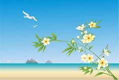 Beach seascape Stock Photography