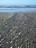 Beach seashells ocean waves Royalty Free Stock Photo