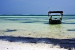 Beach seaweed and boat in tanzania Stock Photos