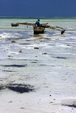 Beach seaweed and boat in zanzibar Stock Images