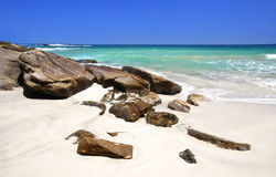 Beach in the Seychelles Royalty Free Stock Photography