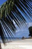 Beach on Seychelles Island. Beautiful white sand beach on Seychelles Island Royalty Free Stock Image