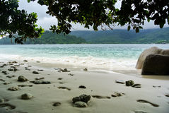 Beach in Seychelles Islands Royalty Free Stock Images