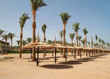 Beach of Sharm el Sheikh Stock Images