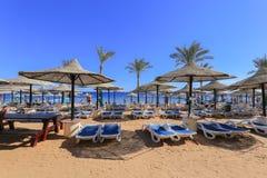 Beach in Sharm El Sheikh Royalty Free Stock Photography