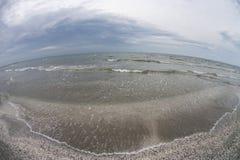 Beach of shells Stock Photos