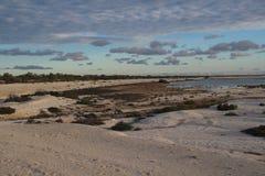 Beach of shells in the orange light of the evening sun Stock Photo