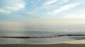Beach shore Stock Photos