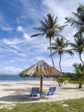Beach Side Chairs. Beach chairs wait under a thatch umbrella on the sand of a tropical resort on a Caribbean island Royalty Free Stock Images