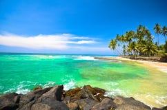 Beach side Sri Lanka with coconut trees Stock Photos