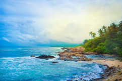 Beach side Sri Lanka with coconut trees Stock Image