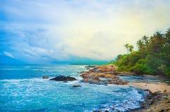 Beach Side Sri Lanka With Coconut Trees Stock Image