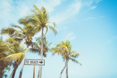 Beach sign for surfing area. Landscape of coconut palm tree on tropical beach in summer. beach sign for surfing area. Vintage effect color filter royalty free stock photos