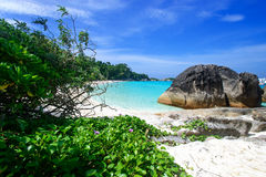 Beach at Similan island, Thailand Royalty Free Stock Photography