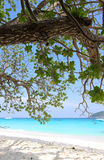 Beach in the Similan Islands Stock Image