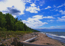 Beach and sky. Long beach with vegetation and blue sky Royalty Free Stock Images