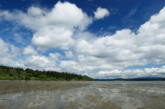 Beach and sky. Beautiful seascape in whidbey island, washington, usa Stock Photography
