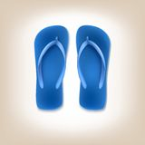 Beach Slippers Icon Stock Photography