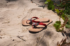 Beach slippers on summer holiday vacation. Red beach slippers worn on a warm summer sandy beach vacation. on white sand with some green plants around Royalty Free Stock Images