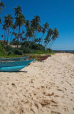 Beach with small colorful light wood boats Stock Photos