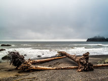 Beach and small islands on the La Push, Royalty Free Stock Photography