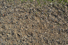 Beach of small pebbles . Stock Photos