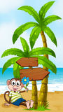 A beach with a smiling monkey sitting under the wooden arrowboar Royalty Free Stock Image
