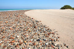 Beach on Socotra island Stock Photos