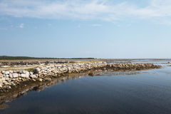 Beach on Solovetsky island, Russia Stock Photography