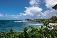 Beach South of Hana, Maui Stock Photos