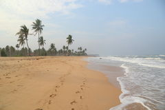 Beach in Sri Lanka Stock Photography