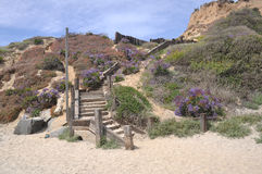 Beach Staircase stock photo