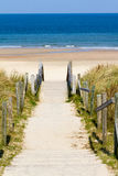 Beach stairs. A wooden staircase leads through the dunes to the beach Royalty Free Stock Images
