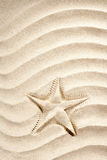 Beach starfish print  white caribbean sand summer Stock Photo