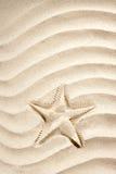 Beach starfish print  white caribbean sand summer Stock Photo
