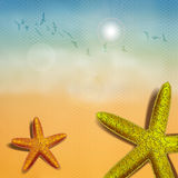Beach Starfish Stock Photography