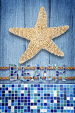 Beach starfish on wood Royalty Free Stock Photography