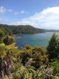 Beach on Stewart Island. New Zealand stock photography