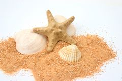 Beach still-life. Still life comprised of a starfish and shells on sand Royalty Free Stock Photo
