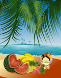 Beach_still_life Stock Image