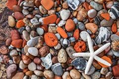 Beach stone Stock Image