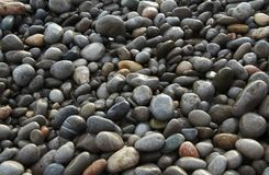 Beach stones Stock Image