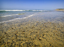 Beach with Stones, California. Wide angle view of the Del Mar beach on the Pacific Ocean in southern California, at low tide, dotted with stones Royalty Free Stock Photos