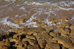 Beach stones Stock Images