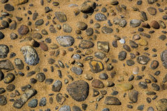 Beach Stones in Sand Stock Images