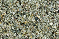 Beach stones and shells background Royalty Free Stock Images