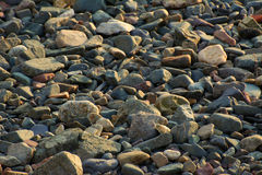 Beach Stones. Smooth beach stones at low tide Stock Images